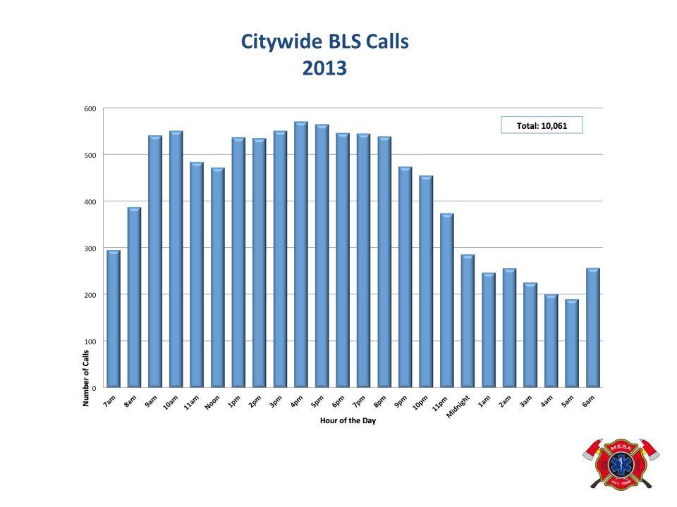 Citywide BLS Calls 2013