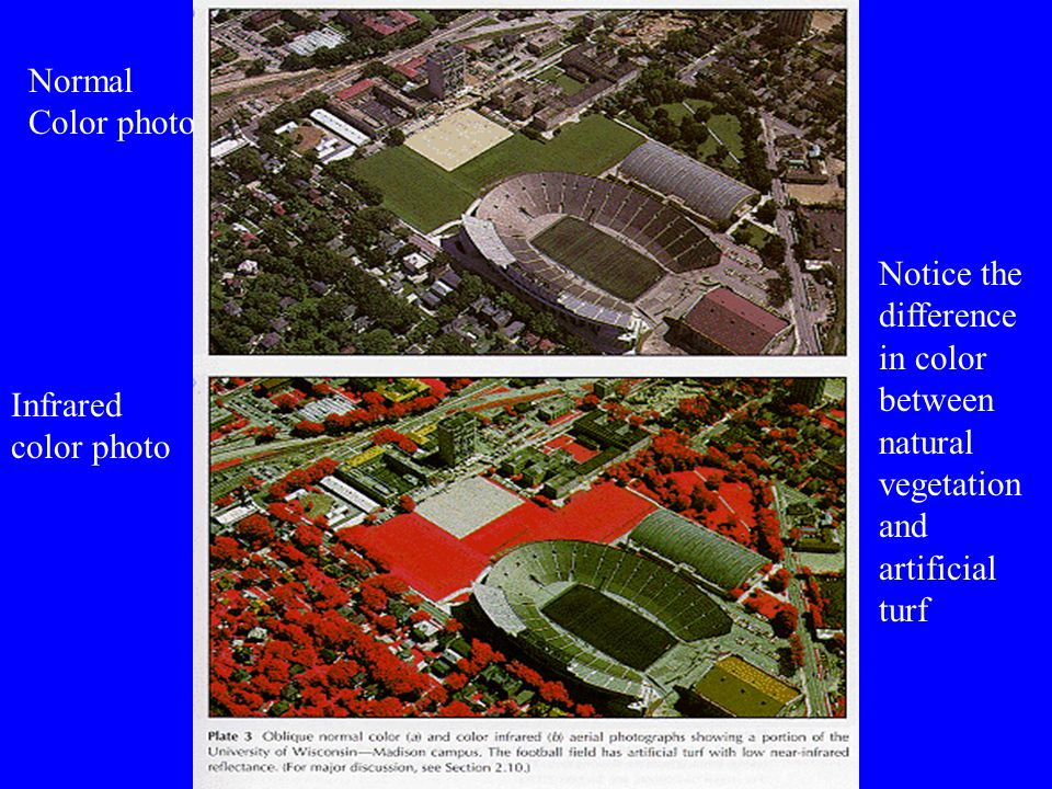 Infrared color photo Normal Color photo Notice the difference in color between natural vegetation and artificial turf