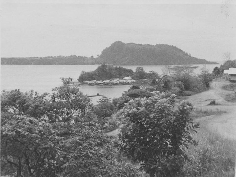 View from Berg en Dal