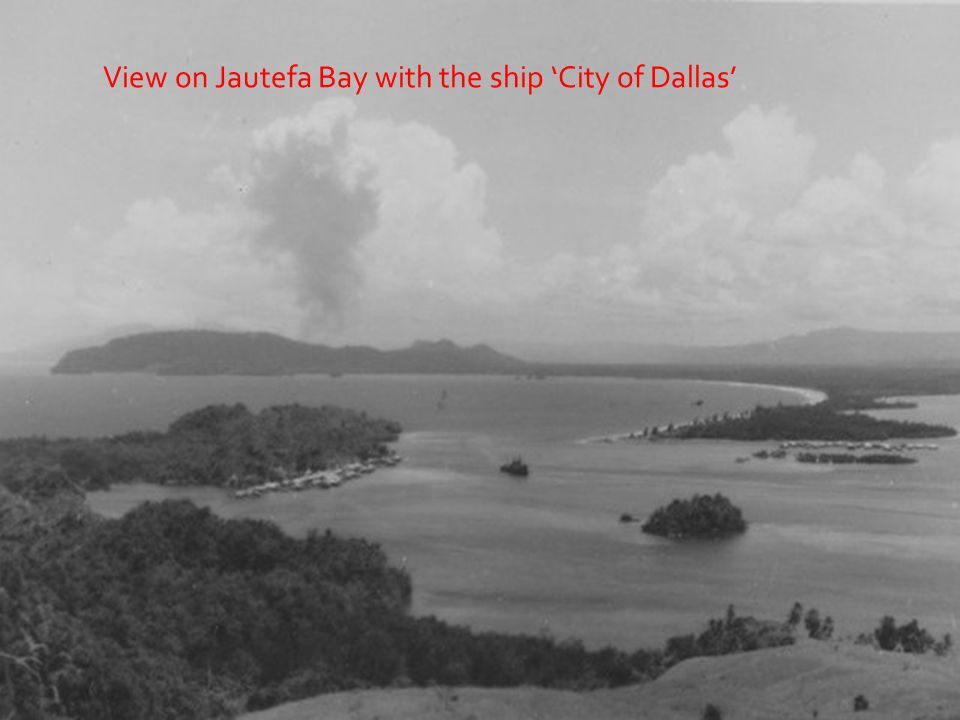 View on Jautefa Bay with the ship City of Dallas