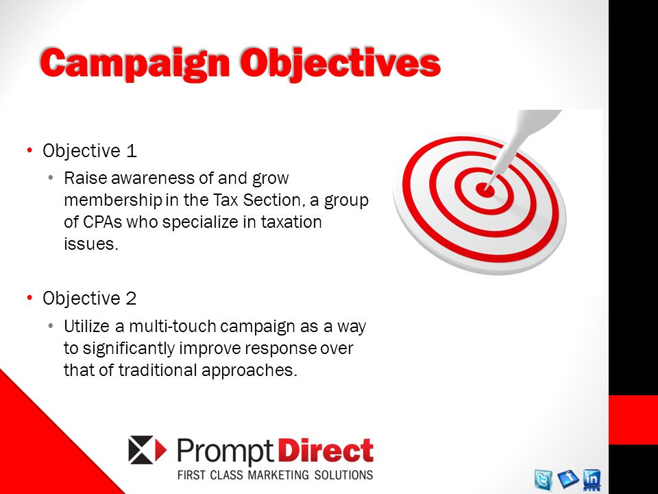 Campaign Objectives Objective 1 Raise awareness of and grow membership in the Tax Section, a group of CPAs who specialize in taxation issues.