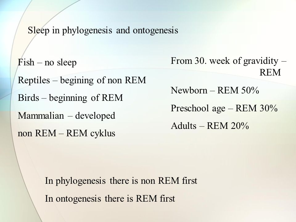 Sleep in phylogenesis and ontogenesis Fish – no sleep Reptiles – begining of non REM Birds – beginning of REM Mammalian – developed non REM – REM cykl