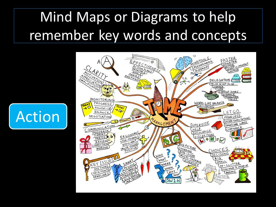 Mind Maps or Diagrams to help remember key words and concepts Action