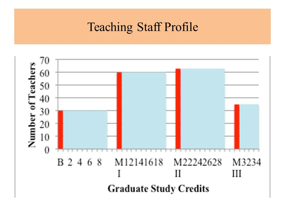 Teaching Staff Profile