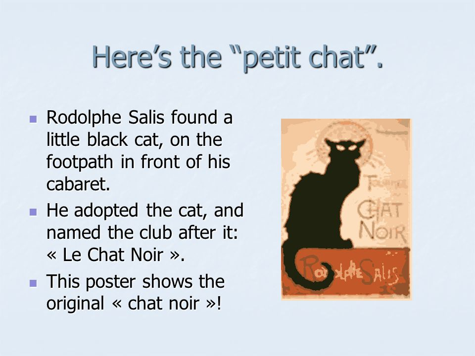 Heres the petit chat.