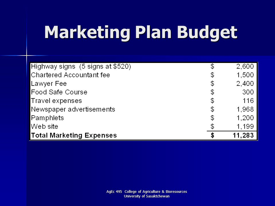 AgEc 495 College of Agriculture & Bioresources University of Sasaktchewan Marketing Plan Budget