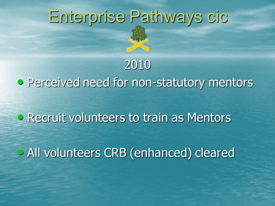 2010 Perceived need for non-statutory mentors Perceived need for non-statutory mentors Recruit volunteers to train as Mentors Recruit volunteers to tr