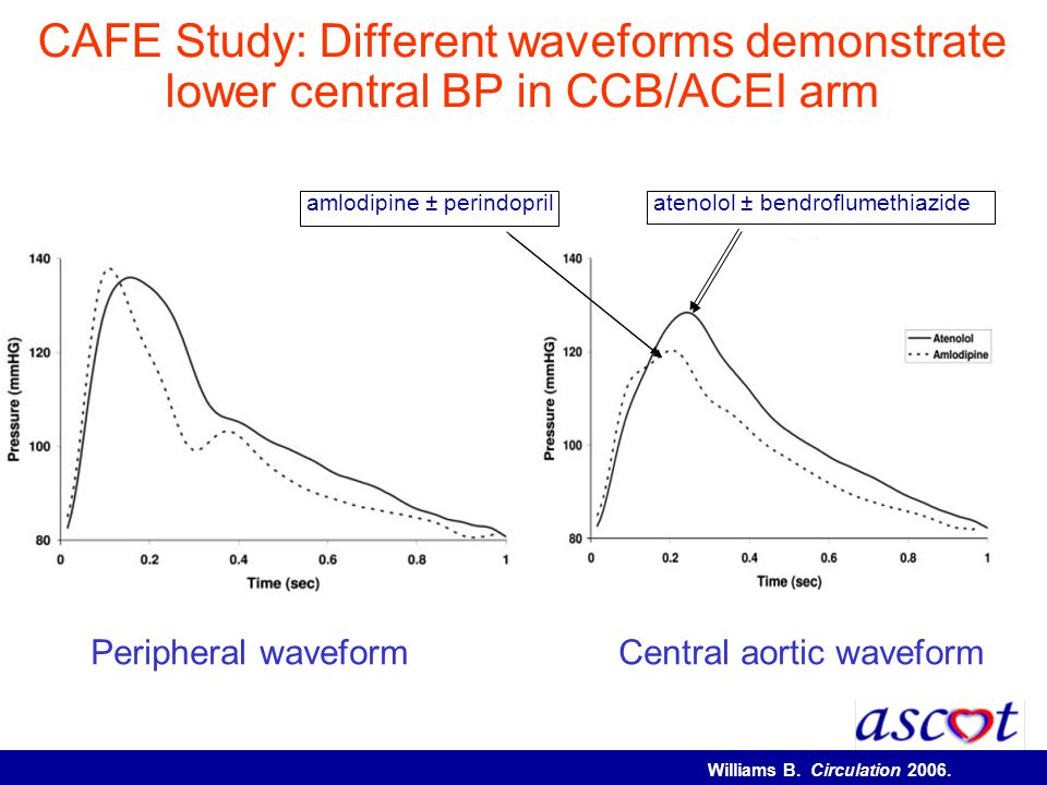 CAFE Study: Different waveforms demonstrate lower central BP in CCB/ACEI arm Peripheral waveformCentral aortic waveform amlodipine ± perindopril ateno