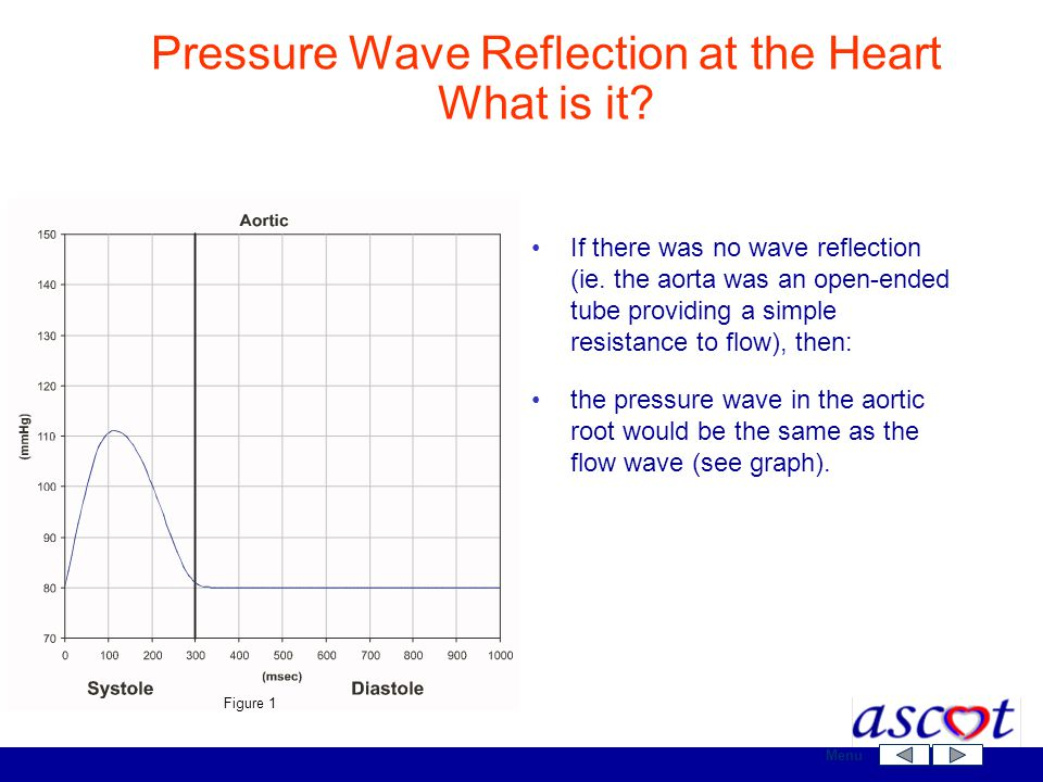 If there was no wave reflection (ie. the aorta was an open-ended tube providing a simple resistance to flow), then: the pressure wave in the aortic ro