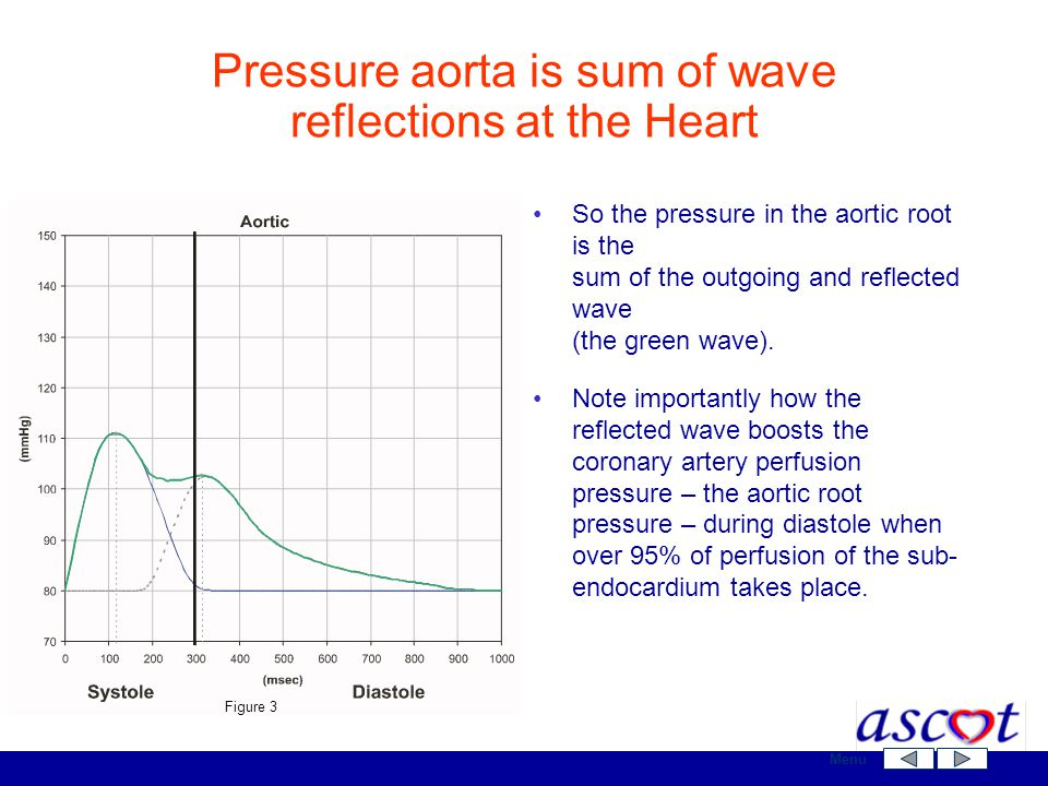 So the pressure in the aortic root is the sum of the outgoing and reflected wave (the green wave). Note importantly how the reflected wave boosts the