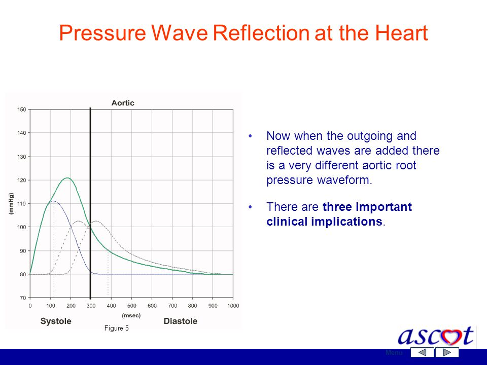 Now when the outgoing and reflected waves are added there is a very different aortic root pressure waveform. There are three important clinical implic