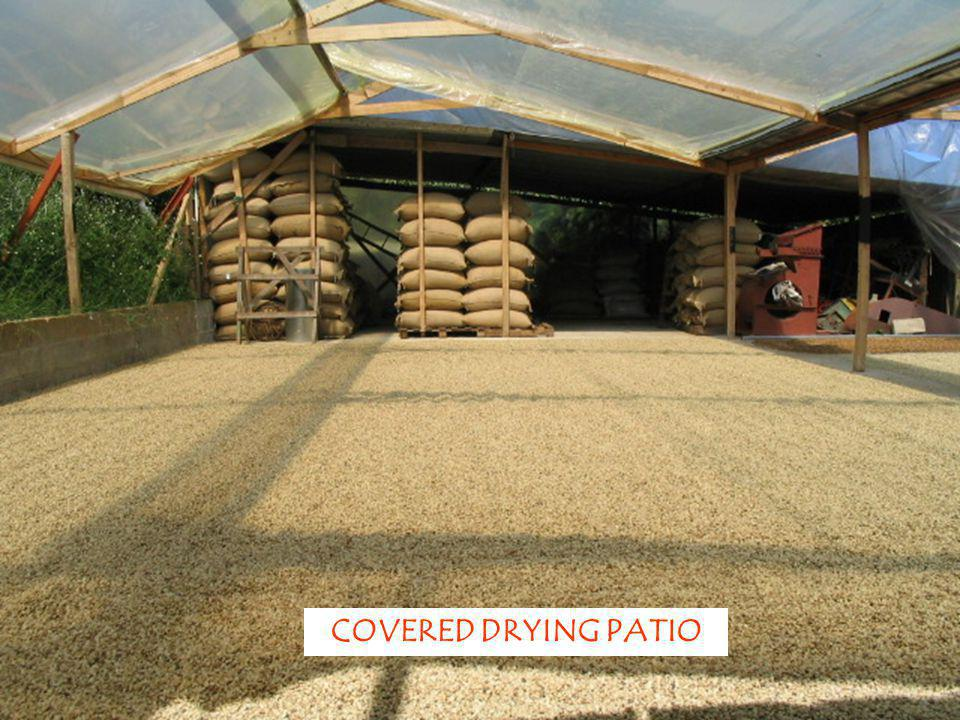 COVERED DRYING PATIO