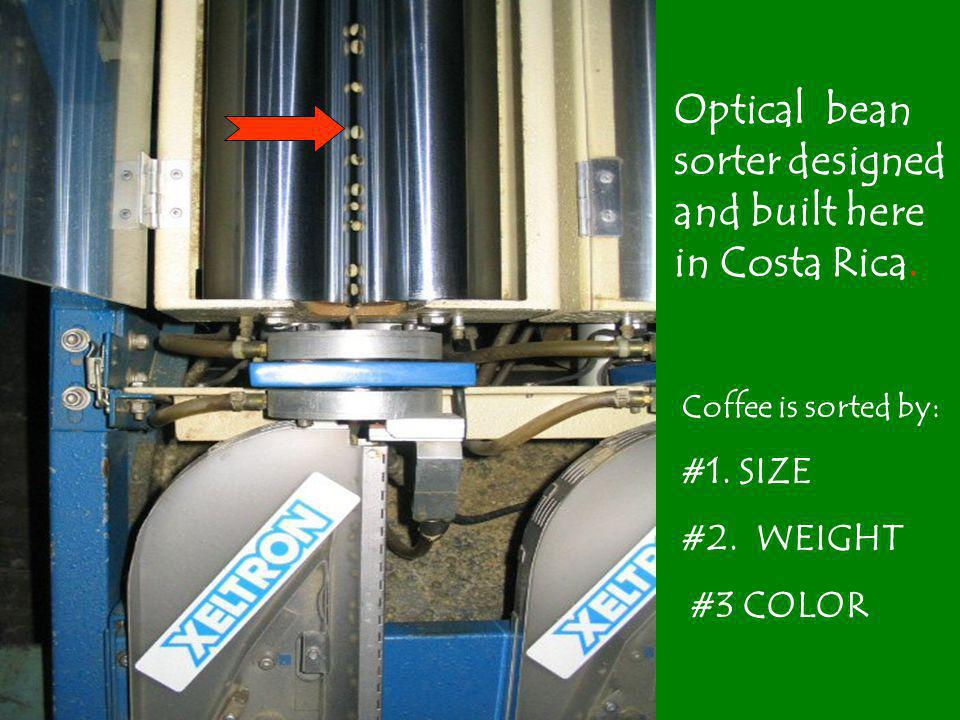 Optical bean sorter designed and built here in Costa Rica.