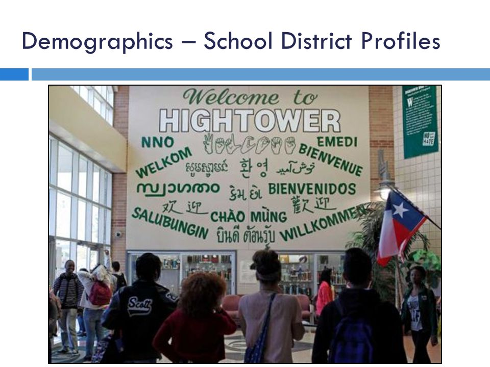 Demographics – School District Profiles