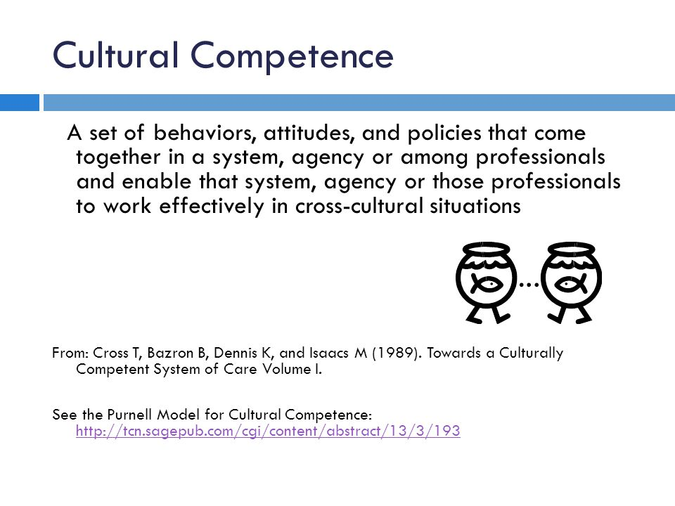 Cultural Competence A set of behaviors, attitudes, and policies that come together in a system, agency or among professionals and enable that system, agency or those professionals to work effectively in cross-cultural situations From: Cross T, Bazron B, Dennis K, and Isaacs M (1989).