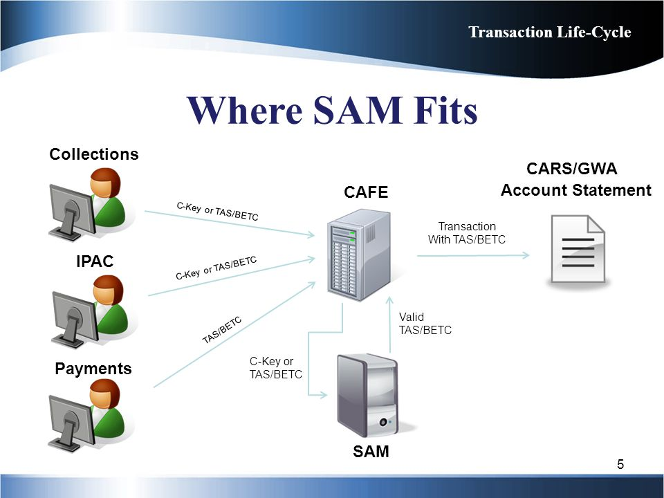 Collections CAFE Account Statement C-Key or TAS/BETC CARS/GWA C-Key or TAS/BETC Valid TAS/BETC SAM Transaction With TAS/BETC IPAC Payments C-Key or TA