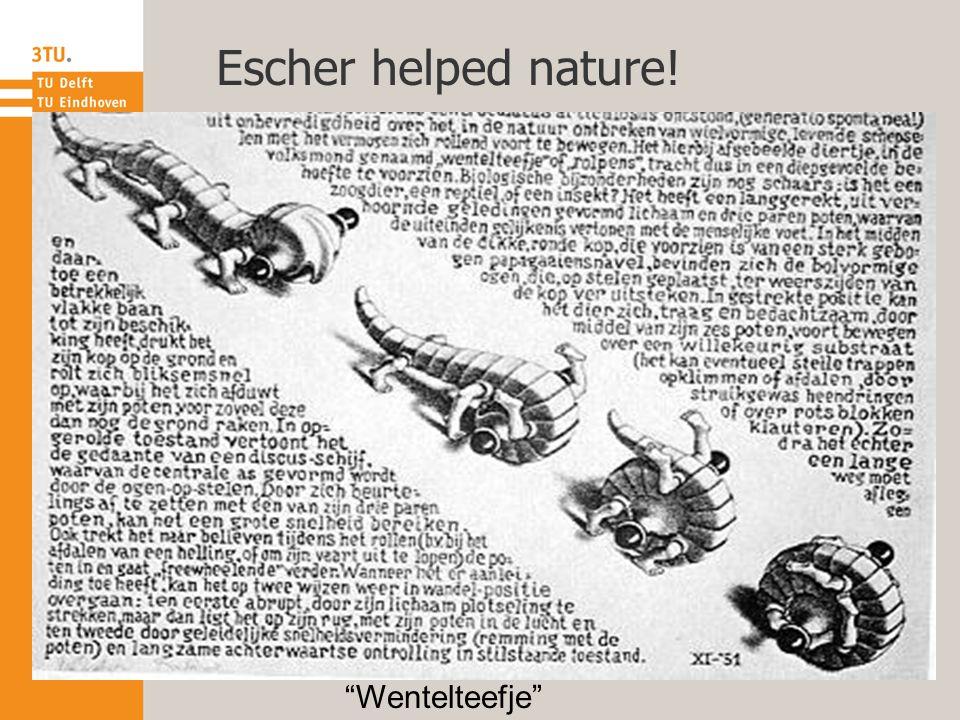 Escher helped nature! Wentelteefje