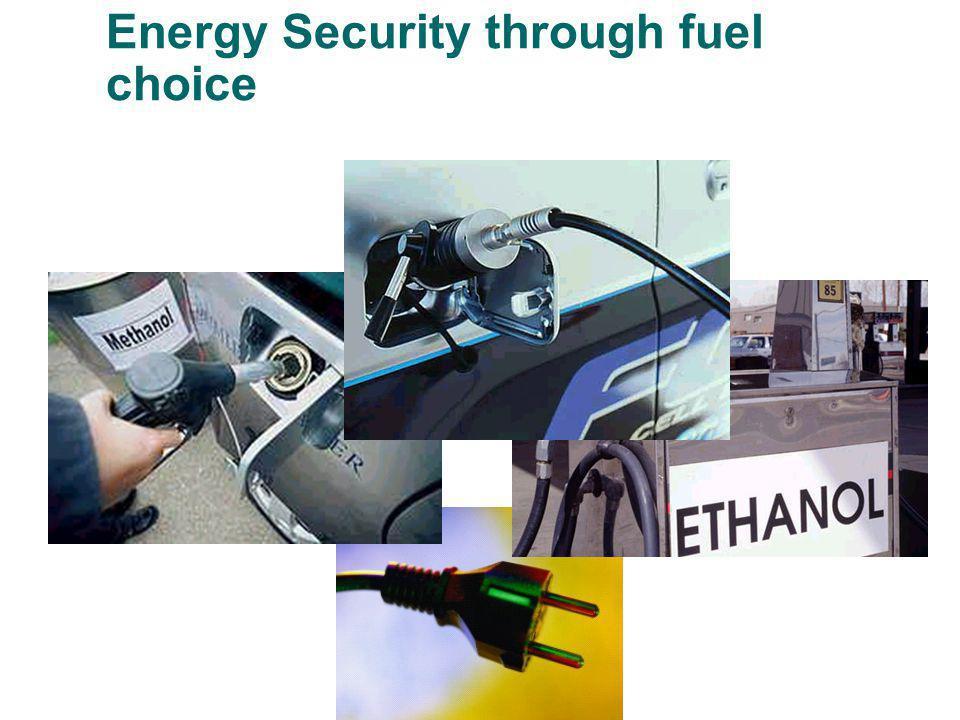 Energy Security through fuel choice