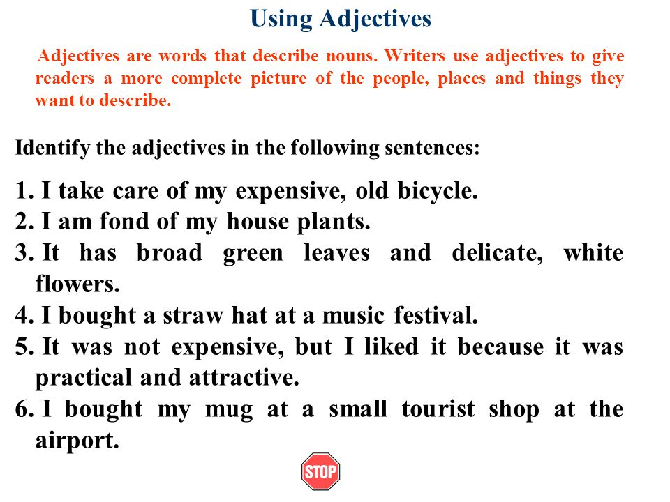 Using Adjectives Adjectives are words that describe nouns.