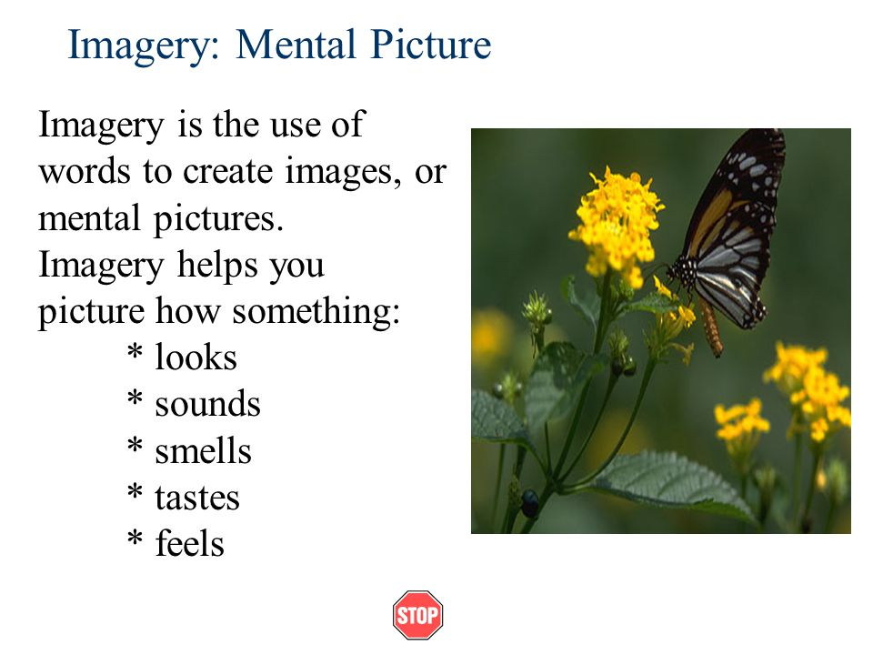 Imagery: Mental Picture Imagery is the use of words to create images, or mental pictures.