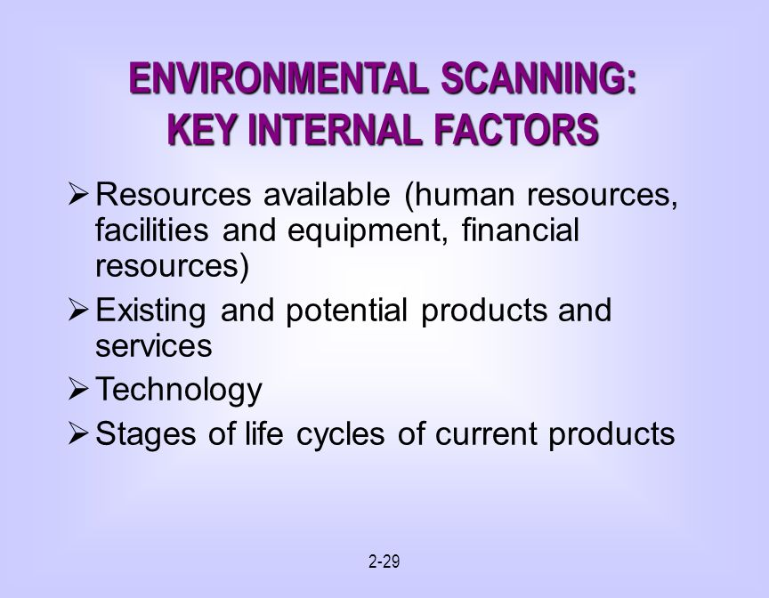 2-29 ENVIRONMENTAL SCANNING: KEY INTERNAL FACTORS Resources available (human resources, facilities and equipment, financial resources) Existing and potential products and services Technology Stages of life cycles of current products