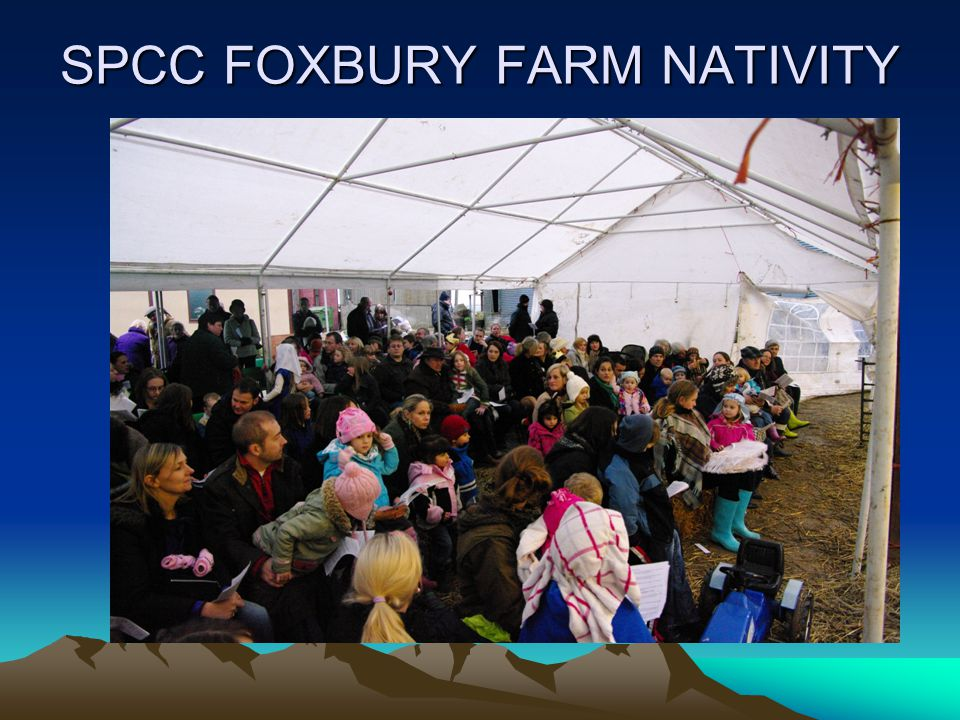 SPCC FOXBURY FARM NATIVITY