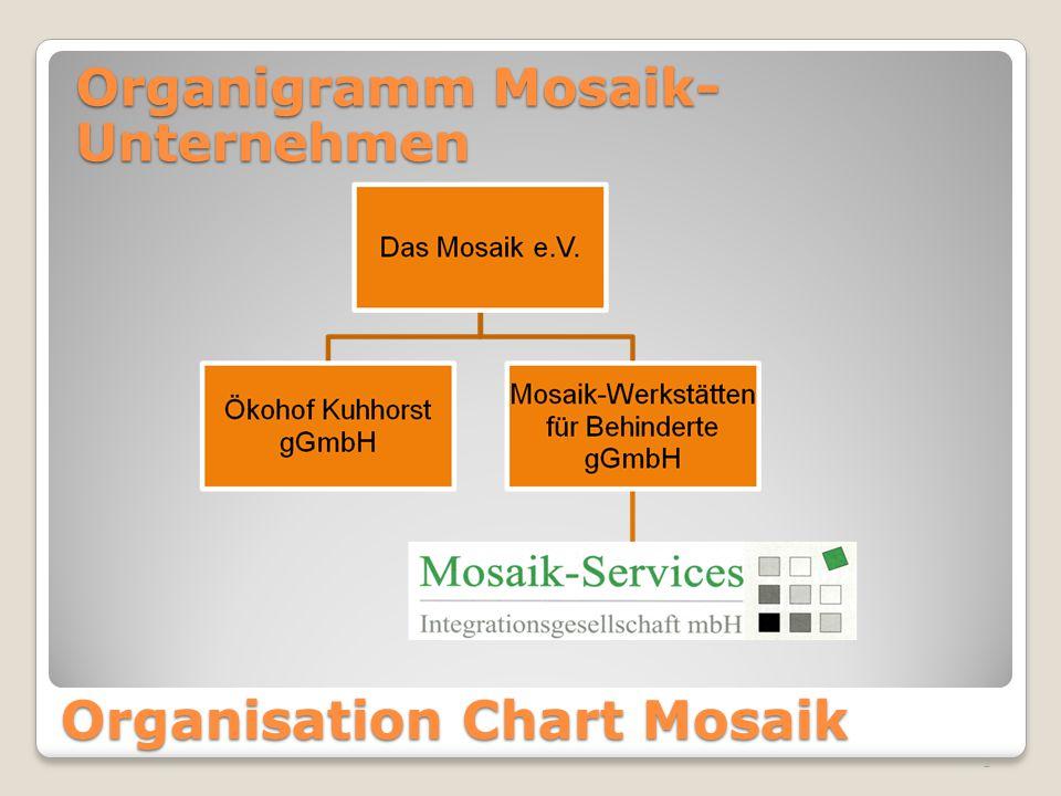 2 Organisation Chart Mosaik Organigramm Mosaik- Unternehmen