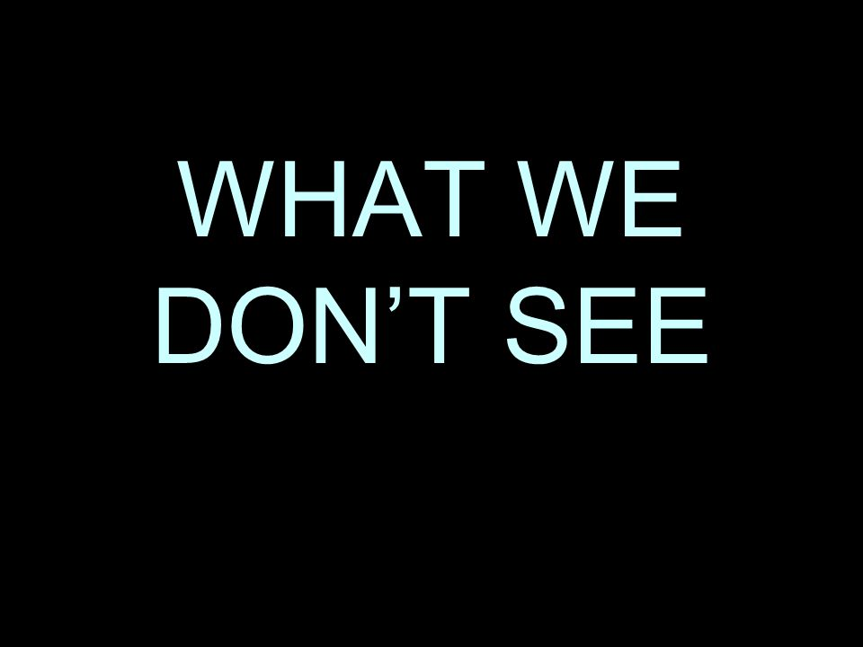 WHAT WE DONT SEE