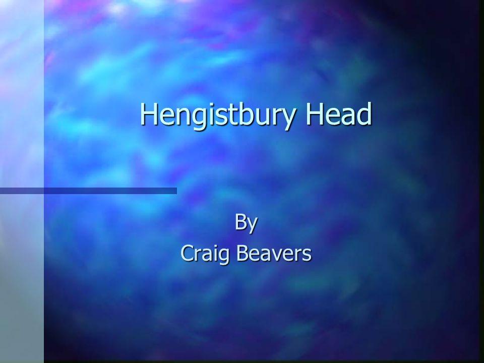 Hengistbury Head By Craig Beavers