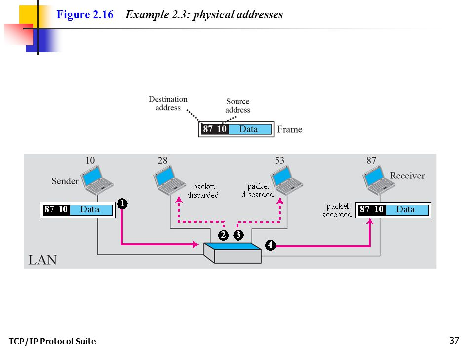 TCP/IP Protocol Suite 37 Figure 2.16 Example 2.3: physical addresses
