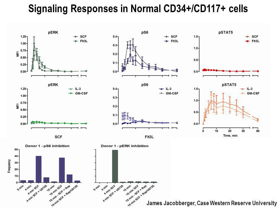 Signaling Responses in Normal CD34+/CD117+ cells James Jacobberger, Case Western Reserve University