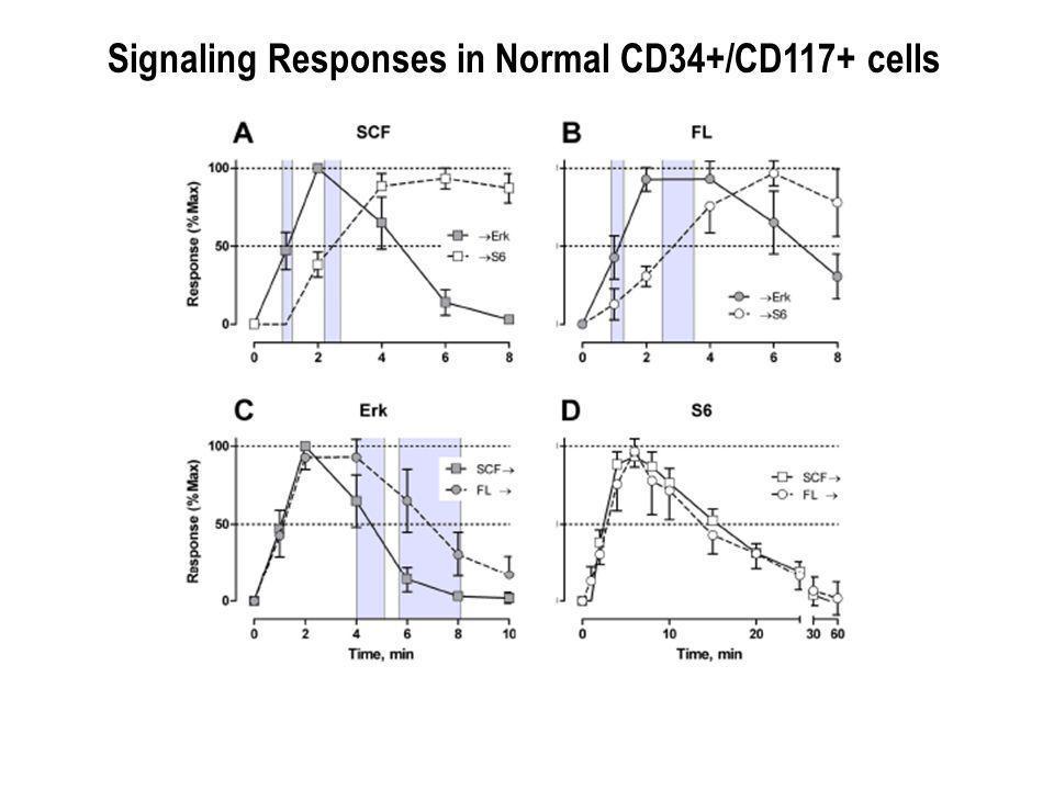 Signaling Responses in Normal CD34+/CD117+ cells