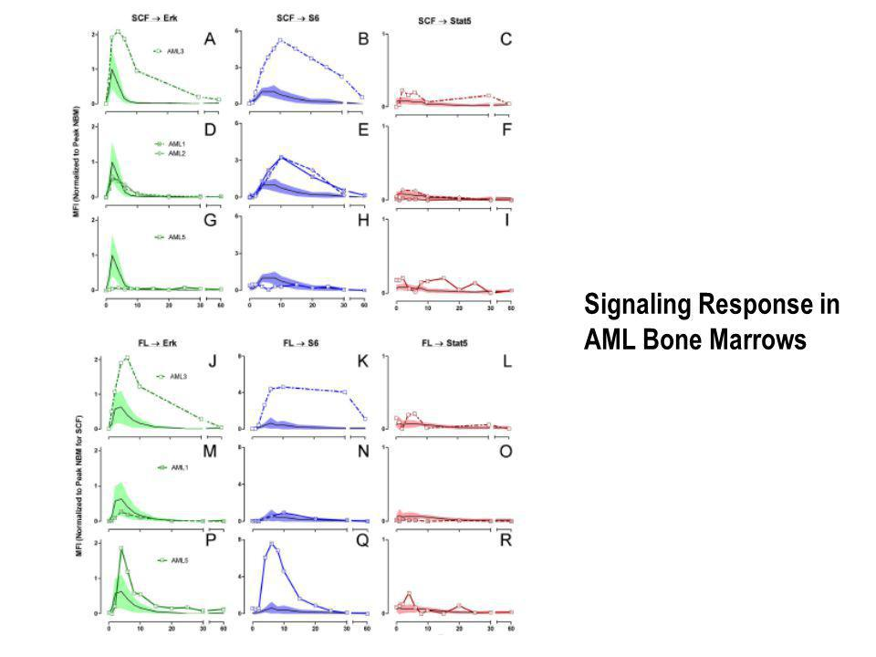 Signaling Response in AML Bone Marrows