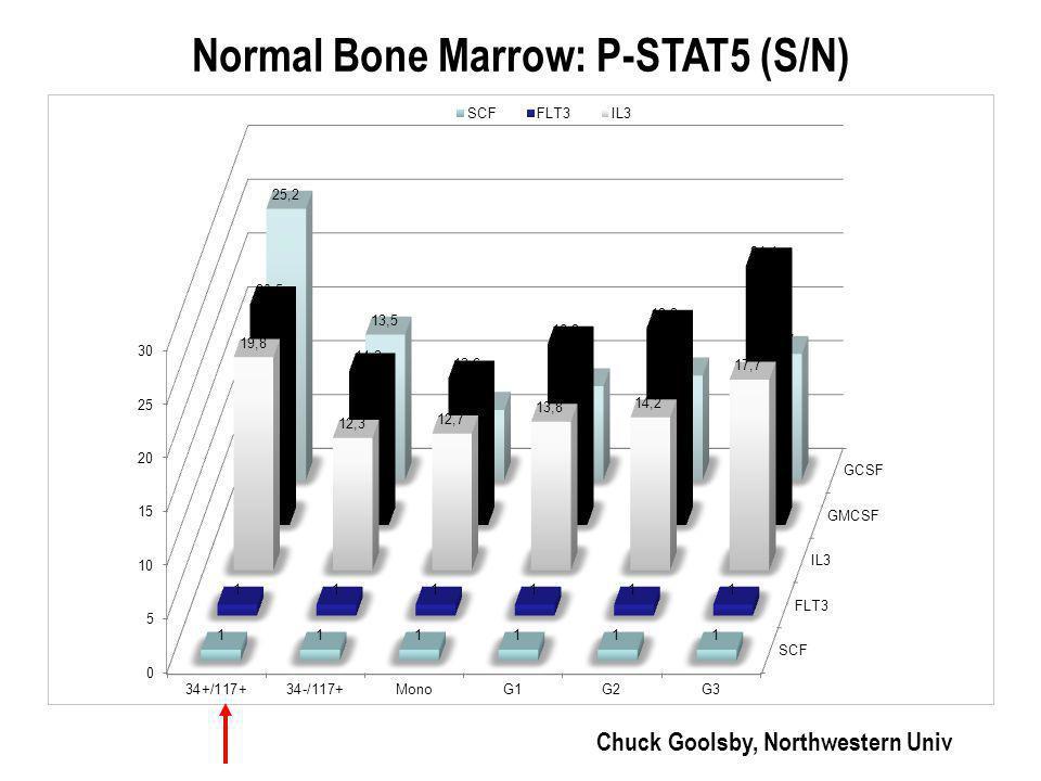 Normal Bone Marrow: P-STAT5 (S/N) Chuck Goolsby, Northwestern Univ