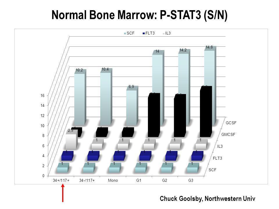 Normal Bone Marrow: P-STAT3 (S/N)