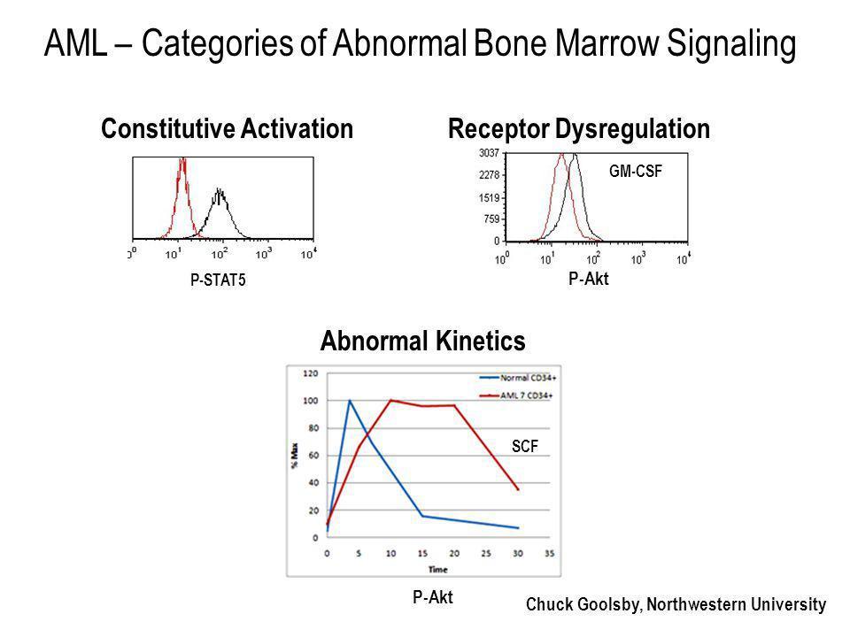 Chuck Goolsby, Northwestern University AML – Categories of Abnormal Bone Marrow Signaling Constitutive Activation P-STAT5 P-Akt Receptor Dysregulation Abnormal Kinetics GM-CSF P-Akt SCF