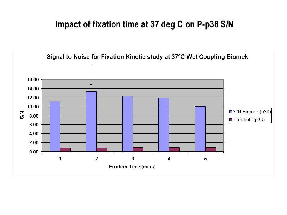 Impact of fixation time at 37 deg C on P-p38 S/N Signal to Noise for Fixation Kinetic study at 37°C Wet Coupling Biomek Fixation Time (mins) S/N S/N Biomek (p38) Controls (p38)