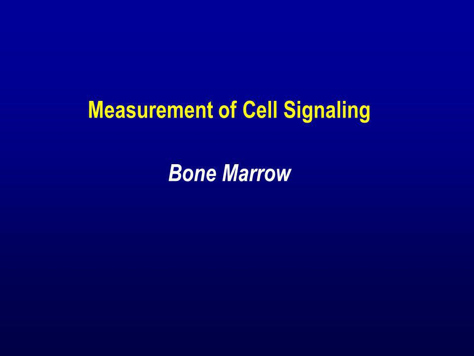 Measurement of Cell Signaling Bone Marrow