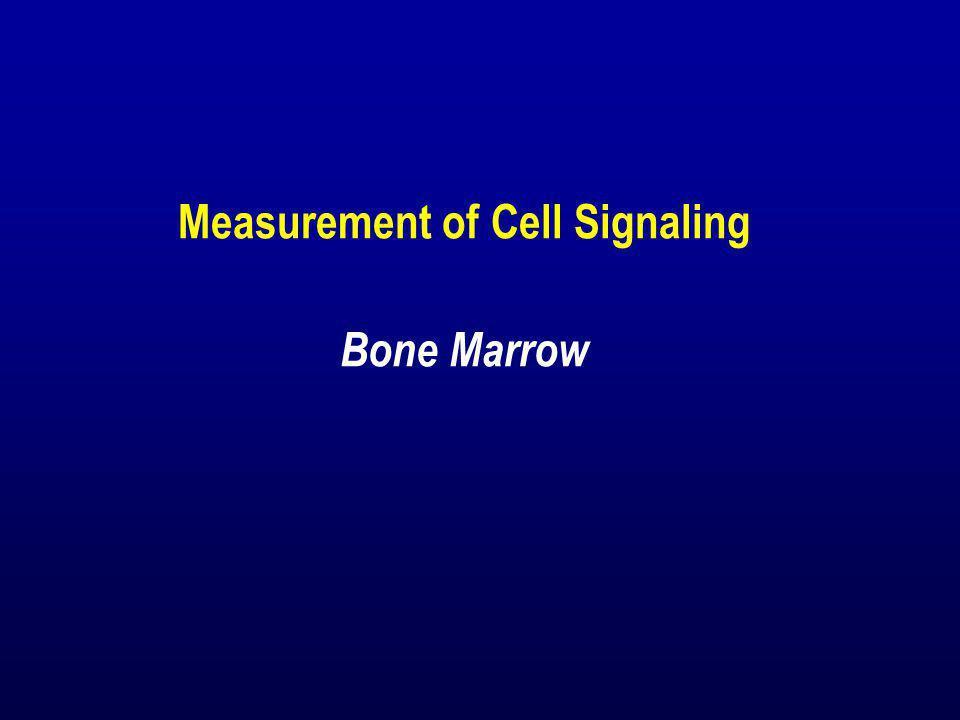 Measurement of Cell Signaling Bone Marrow