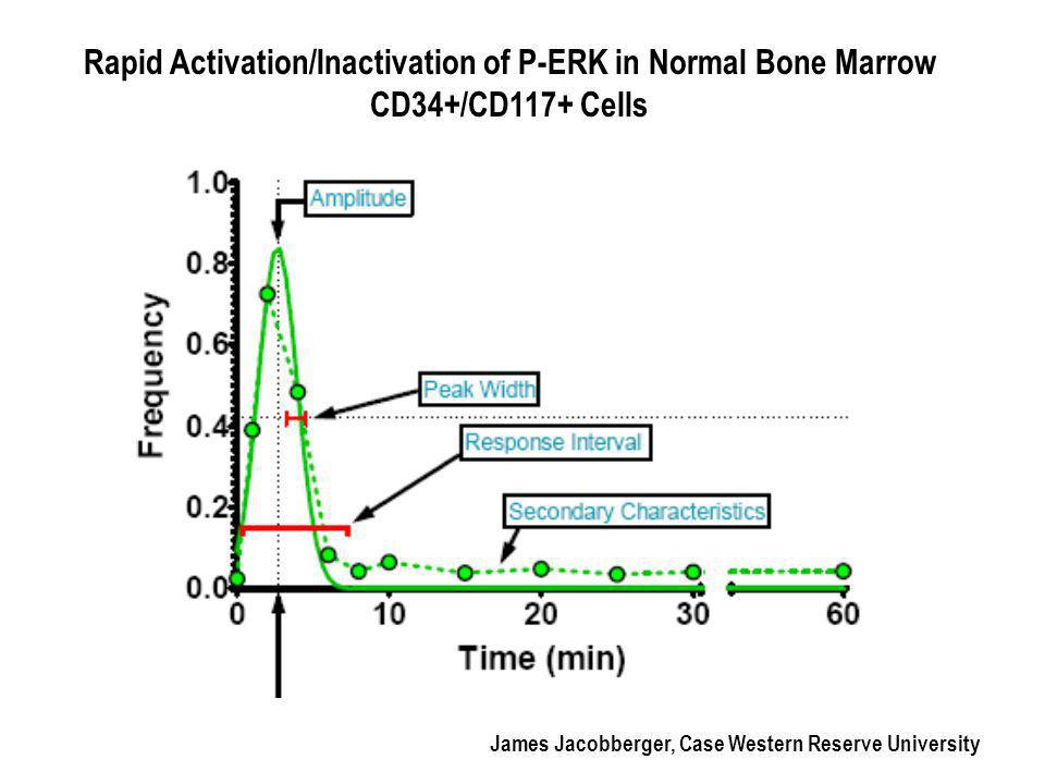 Normal bone marrow cells show highly reproducible signaling pathways that correlate with the differentiation state and the presence of specific cell surface cytokine receptors