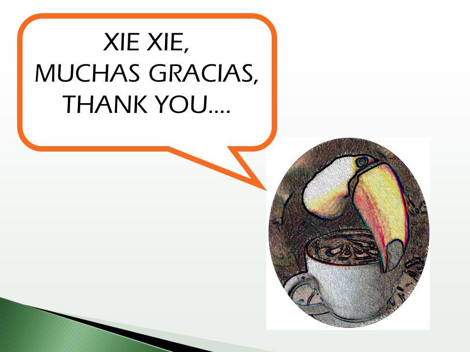 XIE XIE, MUCHAS GRACIAS, THANK YOU….