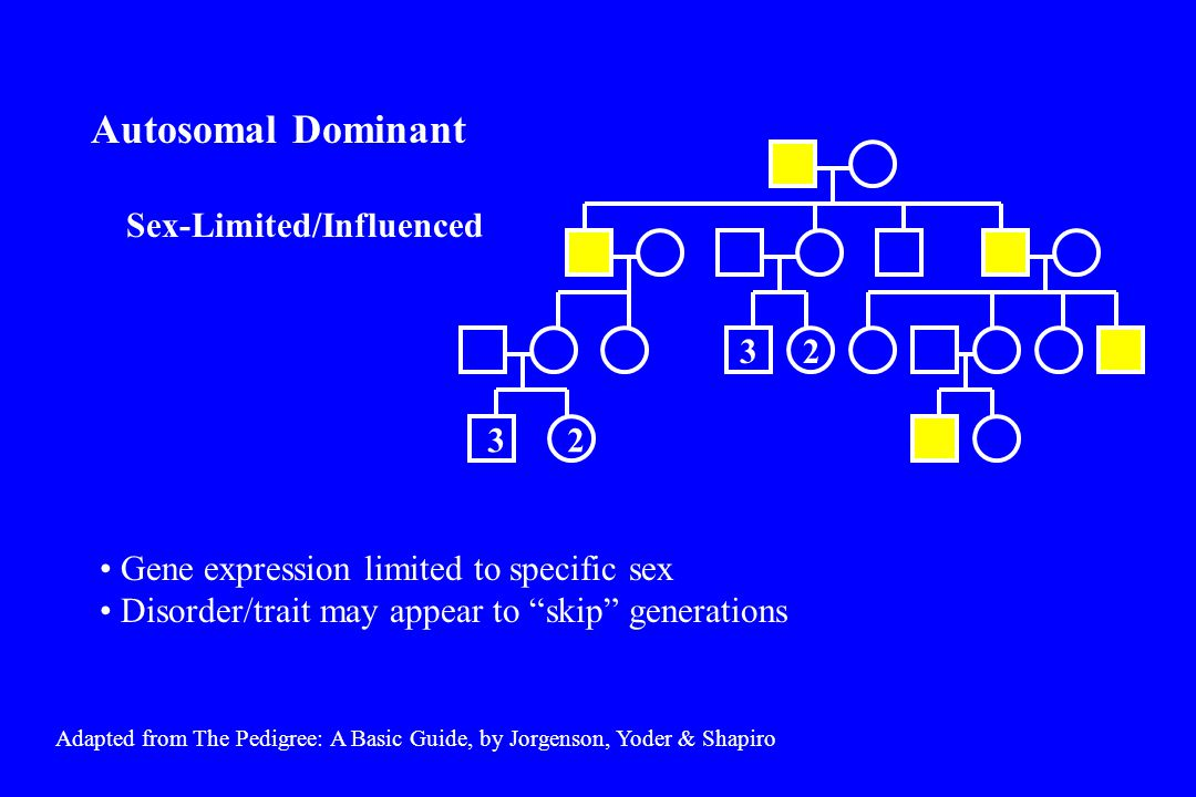 Adapted from The Pedigree: A Basic Guide, by Jorgenson, Yoder & Shapiro 44 Only males are affected Affected males pass the disease gene to all their sons and to none of their daughters Y-linked (Holandric)