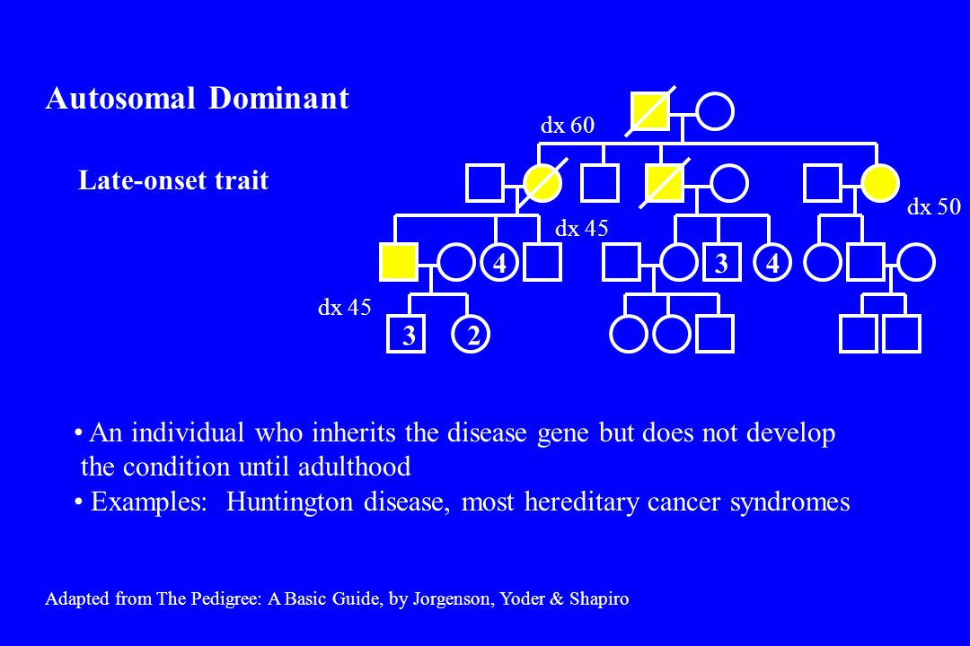 Lisch nodules café-au-lait spots Neurofibromas café-au-lait spots Lisch nodules café-au-lait spots scoliosis Optic glioma learning disability neurofibromas café-au-lait spots Variability of severity of disorder among individuals with same genotype Examples: Neurofibromatosis, Treacher-Collins syndrome Autosomal Dominant Variable Expressivity