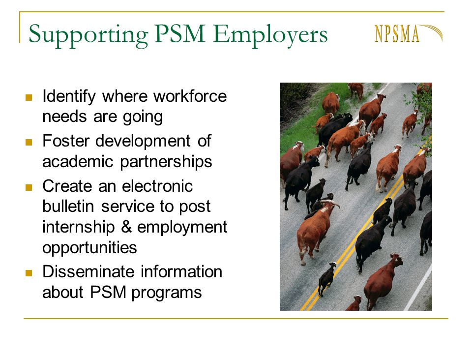 Supporting PSM Employers Identify where workforce needs are going Foster development of academic partnerships Create an electronic bulletin service to post internship & employment opportunities Disseminate information about PSM programs