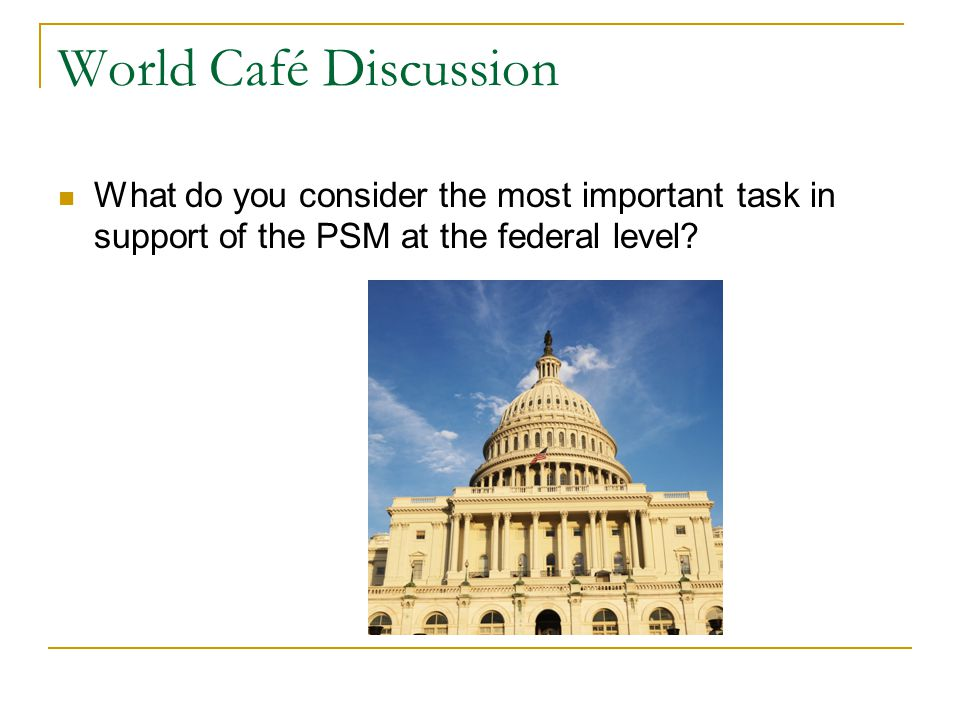 World Café Discussion What do you consider the most important task in support of the PSM at the federal level