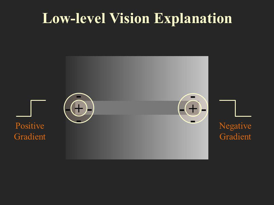 Low-level Vision Explanation + - - --+ - - -- Positive Gradient Negative Gradient