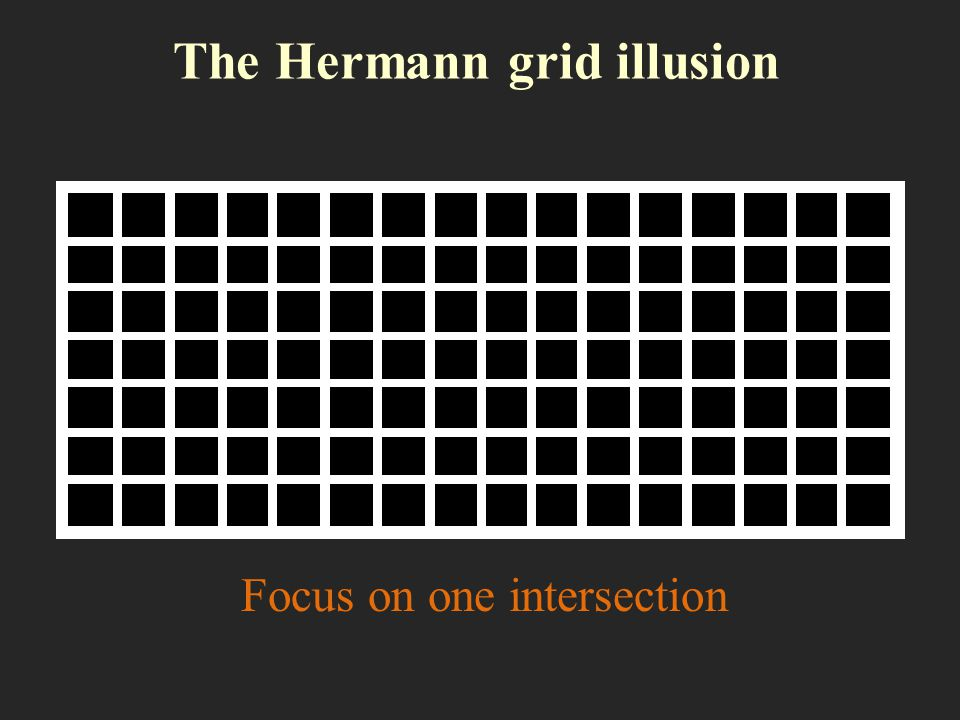 The Hermann grid illusion Focus on one intersection