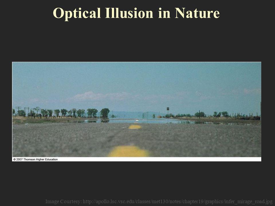 Pinnas Intertwining Illusion