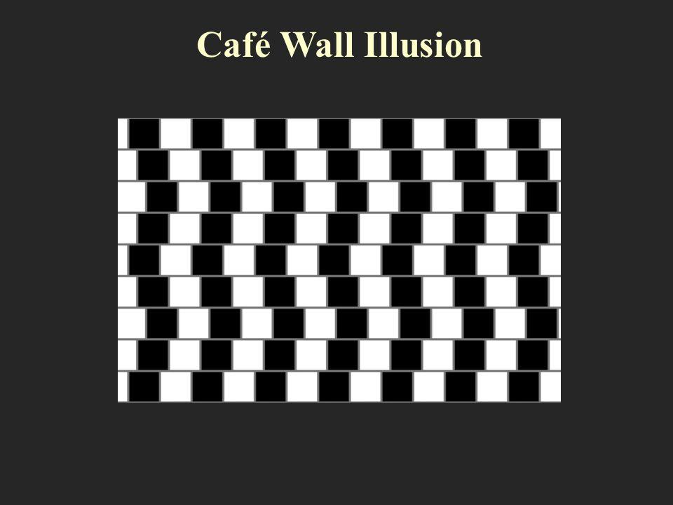Café Wall Illusion