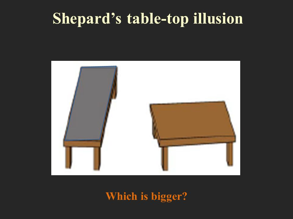 Shepards table-top illusion Which is bigger?